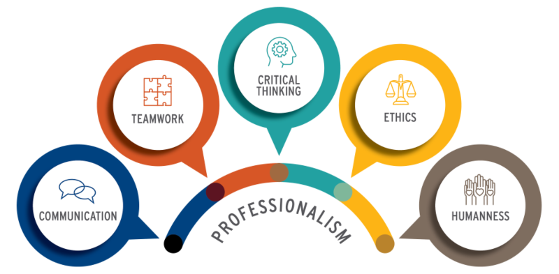 Graphic of Professionalism and the Five Principles